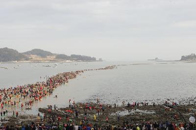 진도 신비의 바닷길 축제