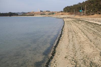 고라금해수욕장
