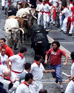 산 페르민 축제