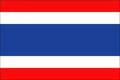타이의 국기