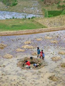 인도네시아의 기후