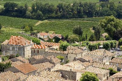 중세 역사의 마을, 생테밀리옹 포도재배지구
