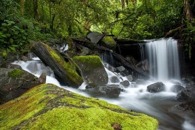 라 아미스테드 보호지역 및 국립공원