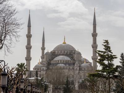 술탄 아흐메드 모스크