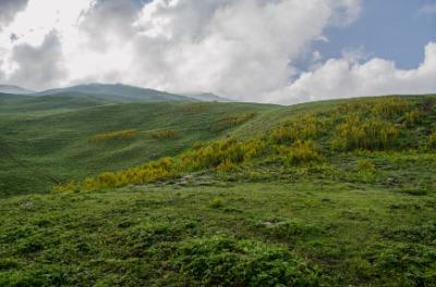 그레이트 히말라야 국립대공원 보존 지역