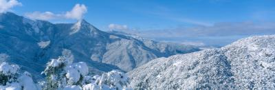 세쿠아 국유림의 겨울풍경 09