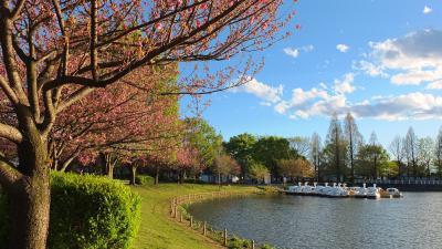 가와고에수상공원, 연못 01