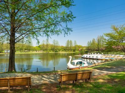 가와고에수상공원, 연못 02