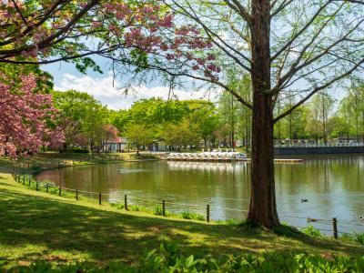 가와고에수상공원, 연못 04