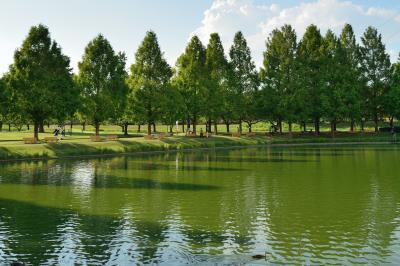 가와고에수상공원, 연못 08