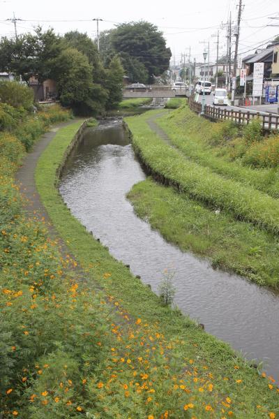 신가시가와의 풍경 06