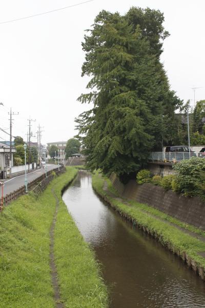 신가시가와의 풍경 07