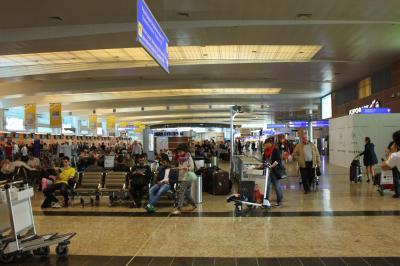 셰레메티예보 국제공항 터미널