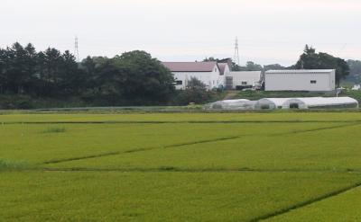 신 치토세공항-신 삿보로역 JR철도 01