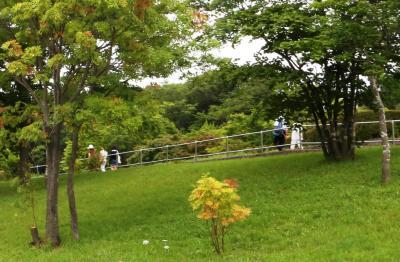 삼림공원 15