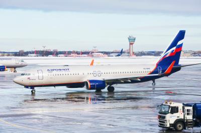 셰레메티예보 공항의 겨울 05