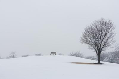 고다이하스노사토의 겨울 풍경