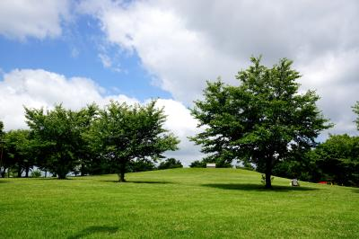 고다이하스노사토, 공원