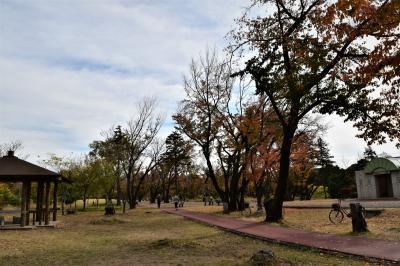 와코주린공원의 가을 풍경