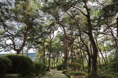 벽초지문화수목원 숲길 02