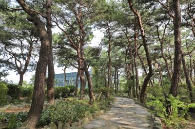 벽초지문화수목원 숲길 03