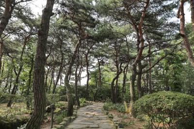 벽초지문화수목원 숲길 04