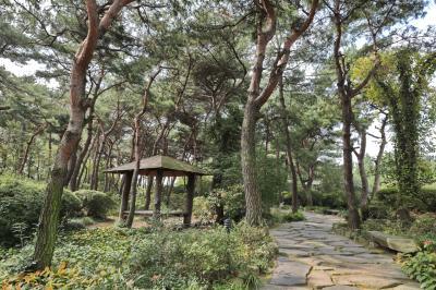 벽초지문화수목원 숲길 05