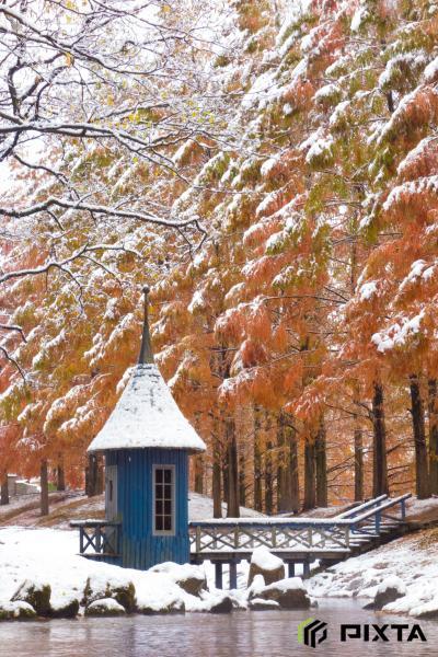 아케보노 어린이 숲 공원의 겨울 풍경