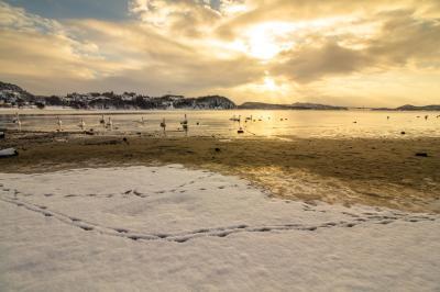 함레산덴 해변 05