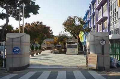 대구진천초등학교 04