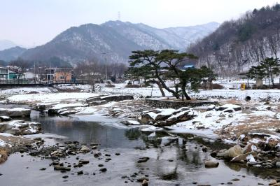 남조천  12