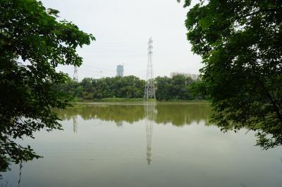 전해공원 16