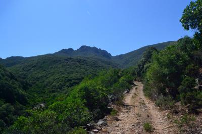 라티아스 산  03