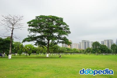 동관시청 잔디광장