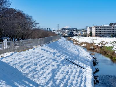 야마자키공원, 겨울 01