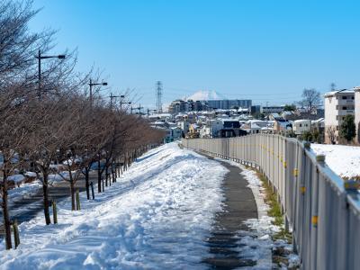 야마자키공원, 겨울 03