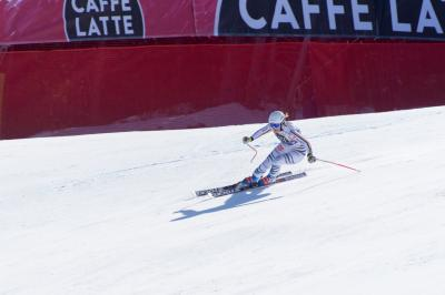 아우디 알파인 스키 월드컵
