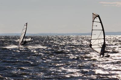 발라톤 호수 윈드서핑 대회