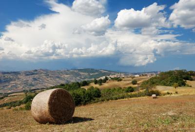 몬타가노 마을 시골풍경 03