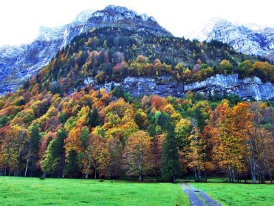 글레이테르혼 계곡 가을풍경