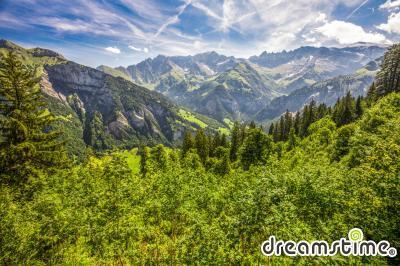 엘음 산 계곡