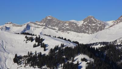랠러리 스키 마을 05
