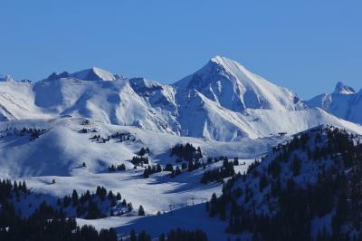랠러리 스키 마을 03