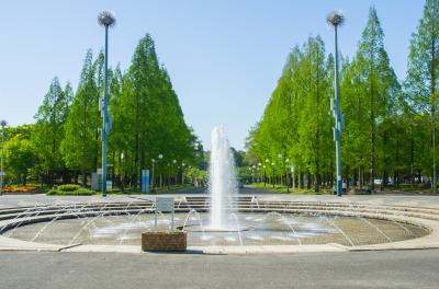 하나하쿠기념공원츠루미녹지, 분수 01