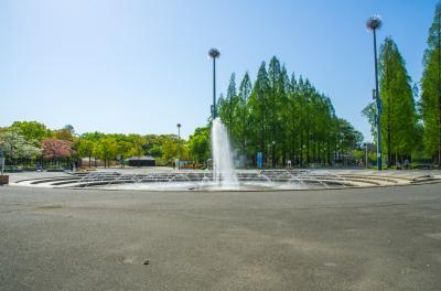 하나하쿠기념공원츠루미녹지, 분수 06