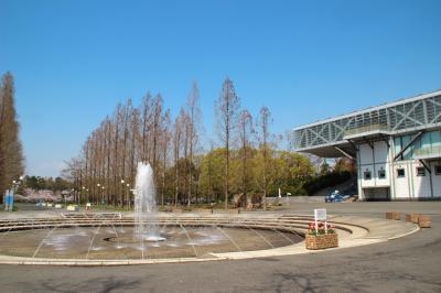 하나하쿠기념공원츠루미녹지, 분수 07