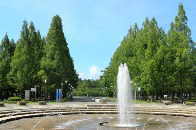 하나하쿠기념공원츠루미녹지, 분수 08