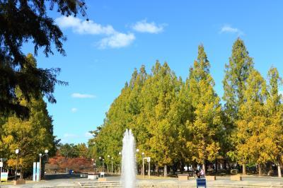 하나하쿠기념공원츠루미녹지, 분수 09