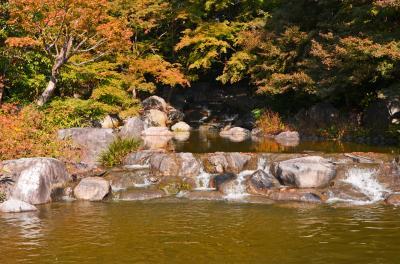 하나하쿠기념공원츠루미녹지, 가을 06