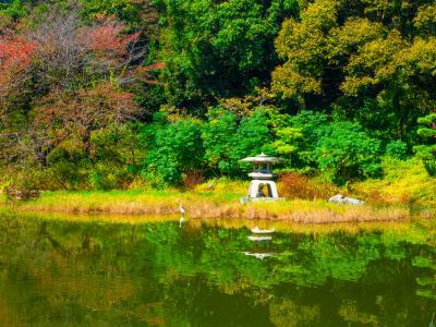 하나하쿠기념공원츠루미녹지, 가을 01